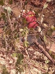 Corpo em avançado estado de decomposição é encontrado em Esperantinópolis-MA