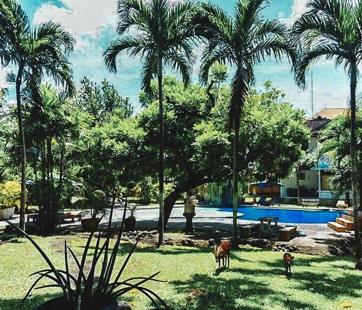 Kuta Airbnb Indonesia