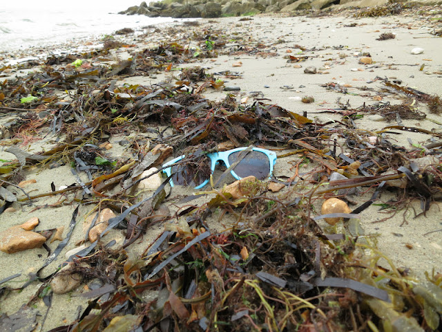 Pair of blue, plastic sunglasses washed up with seaweed on sandy beach