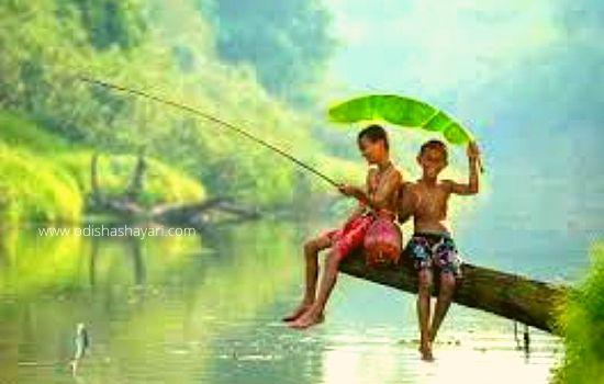 Beauty of Rainy season