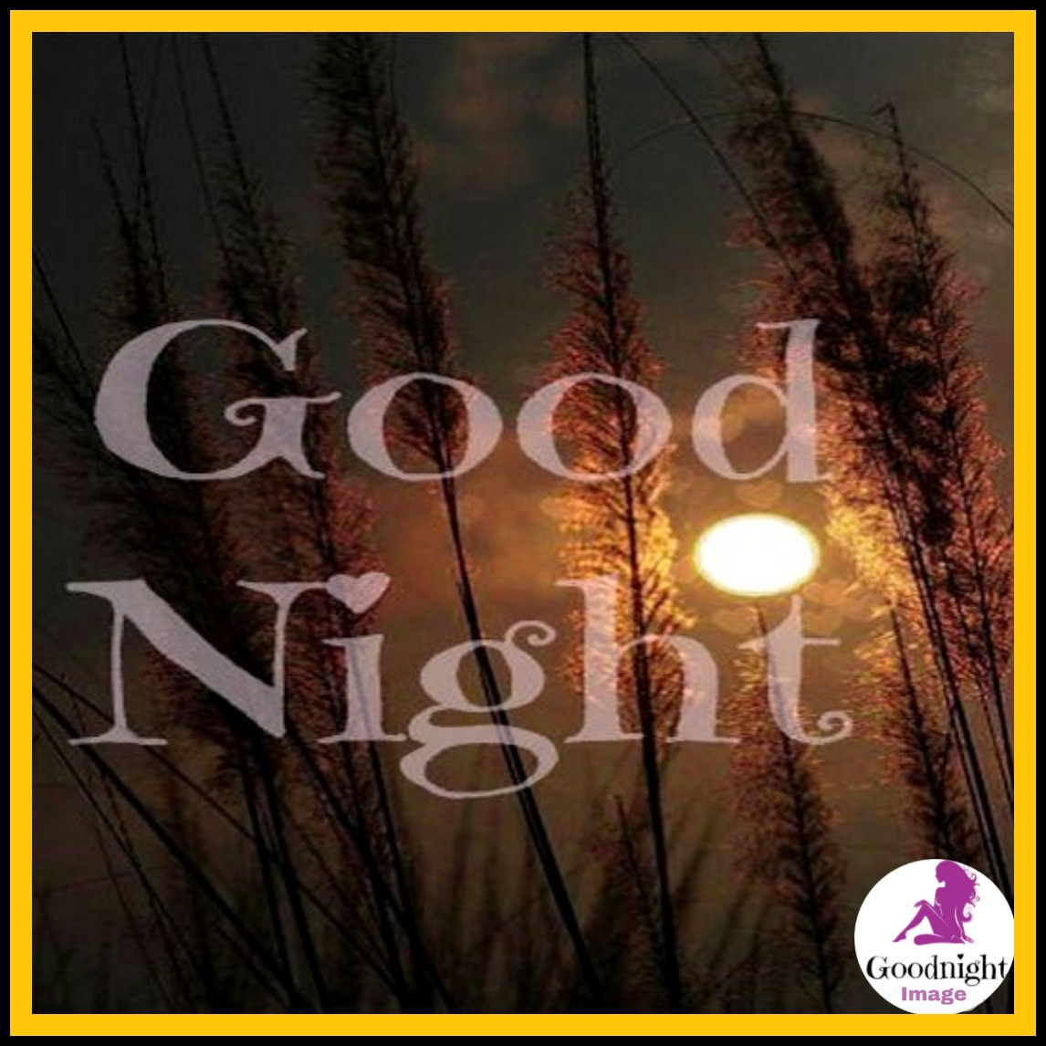 Good Night%2BImage 21