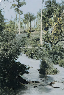 sungai bah bolon di siantar