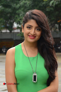 Actress Poonam Kaur Pictures in Green Short Dress at Prayanam Movie Opening  0001
