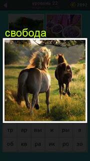 две лошади бегут по траве на свободу 22 уровень 667 слов
