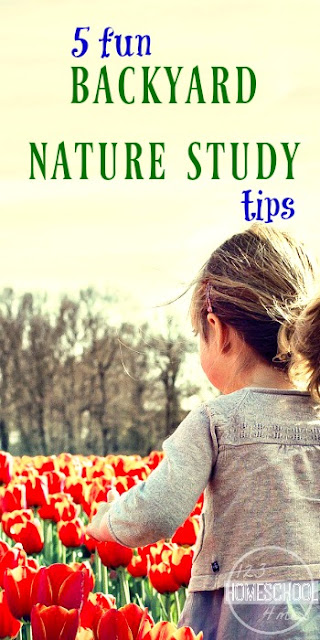 5 Fun Backyard Nature Study Tips - perfect for summer learning, homeschool families, preschool, prek ,kindergarten, weekend fun with families and science class.