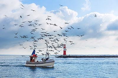 adobestock 119699397 fishing boat rostock400 62348 0 - Pesca sostenible, pesquerías ambientalmente sostenibles y económicamente viables sin descartes