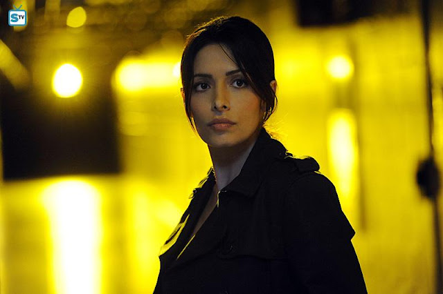 Performers Of The Month - June Winner: Outstanding Actress - Sarah Shahi