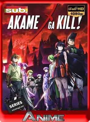 Akame ga Kill! [24/24 + 24 Especiales][ subtitulada HD [1080P] [GoogleDrive] DizonHD