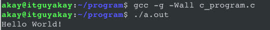 options and flags in GCC command