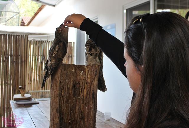 O que fazer com adolescentes em Foz do Iguaçu