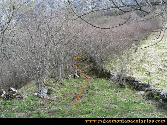 Ruta Puente Vidosa, Jucantu: Colladina