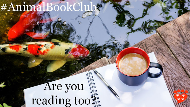 Celebrating two years of the animal book club. Here, a cup of coffee and a book by a pond of koi carp