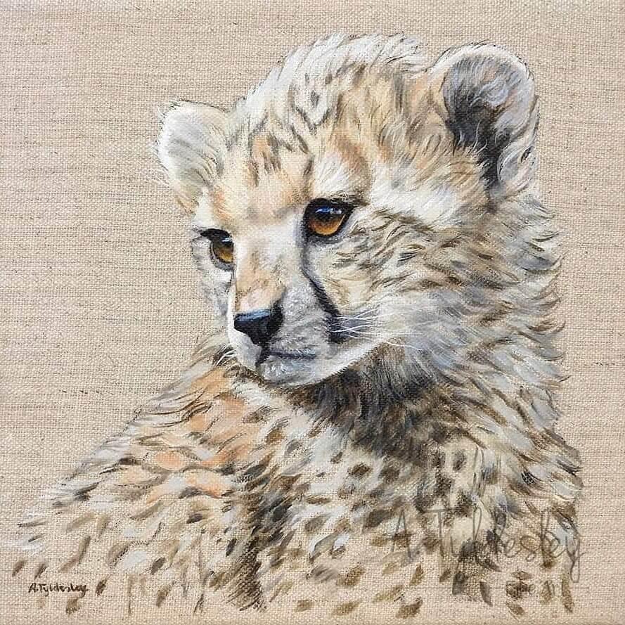 07-Baby-Cheetah-Amber-Tyldesley-www-designstack-co