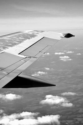 Asa de aeronave num voo