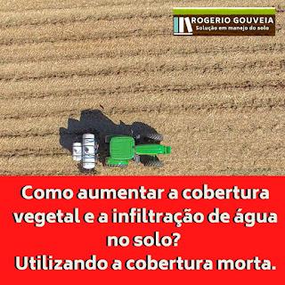 Como aumentar a cobertura vegetal e a infiltração de água no solo? Utilizando a cobertura morta.