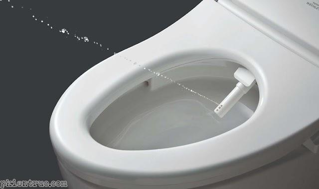 Nên lựa chọn nắp rửa điện tử hay vòi xịt bằng tay cho bàn cầu thông minh