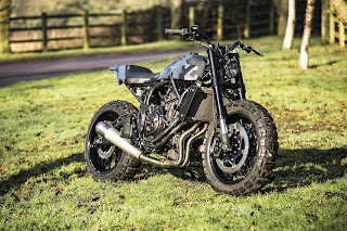 XSR700-The Soil Scorpion