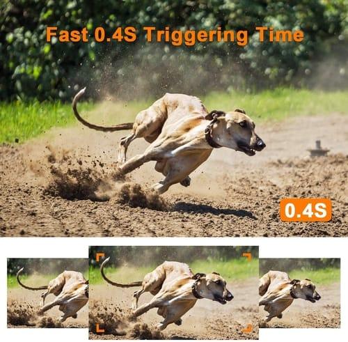 Review XTU T506 24MP Full HD Hunting Trail Camera