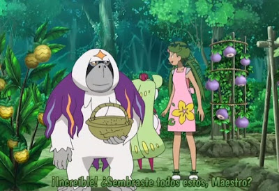 Pokemon Sol y Luna Capitulo 121 Temporada 20 El valiente esfuerzo de Mao, el café Pokémon del bosque