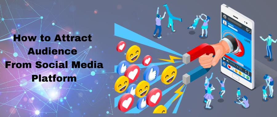 How to attract an audience from social media platforms