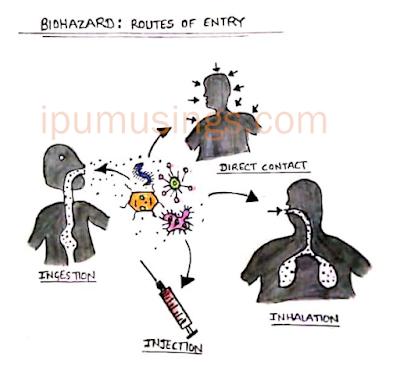 Biohazards: Understanding Biological Behaviour and Related Hazard and Biodefence Strategies (disinfection)(#ipumusings)(#biochemistry)