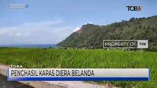 Desa Meat Kabupaten Toba Dulunya Penghasil Kapas Di Era Belanda