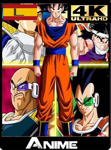 Dragon Ball Z Temporada (1 y 2) 4K Ultra HD latino [GoogleDrive]