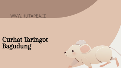 Cerita lucu bagudung tikus