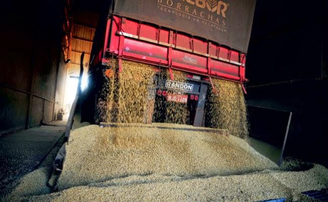 Valor do frete para transportar grãos ao Porto de Santos sobe