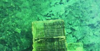 Θρίλερ στον βυθό για 11χρονο στο λιμάνι της Αλοννήσου. Εγκλωβίστηκε σε σιδερένιο κλουβί στη θάλασσα!