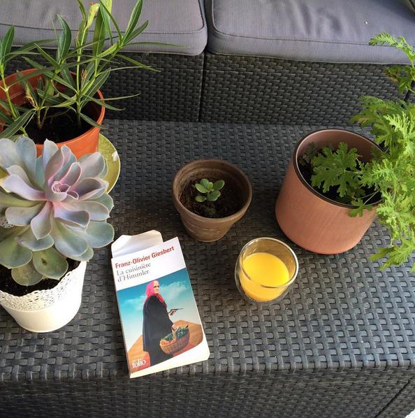 le blog de pillapon parlons bouquins 19 une partie des livres que j 39 ai lus en 2015 part one. Black Bedroom Furniture Sets. Home Design Ideas