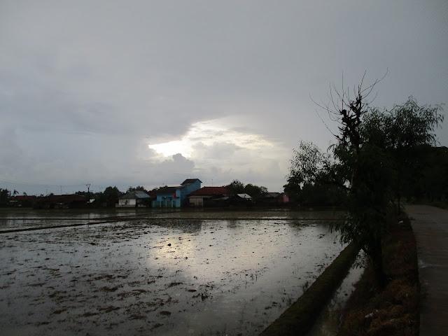 https://www.sukaratu.com/2020/12/berangkat-pagi-pulang-malam-kehujanan.html