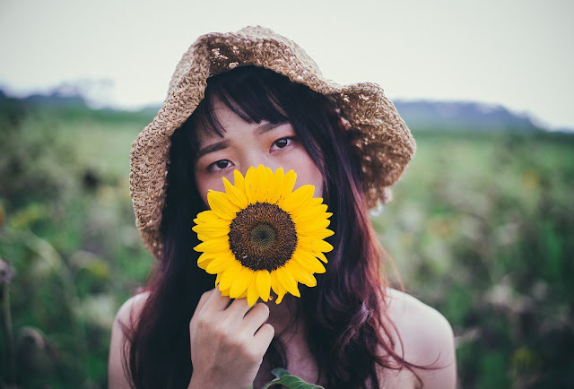 Sunflower Wallpapers in 4K - Pics Directory