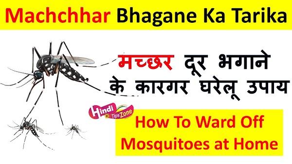 मच्छर दूर भगाने के कारगर घरेलू उपाय | Machchhar Bhagane Ka Tarika.