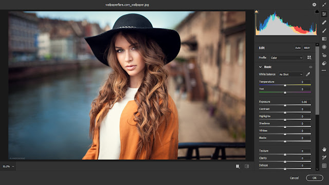 Download and install Camera RAW 12 3 latest version