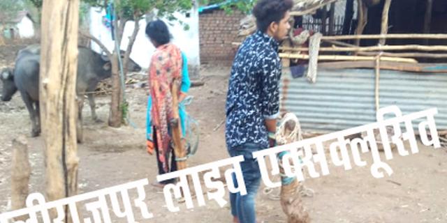 युवक-युवती को जानवरों के खूंटे से बांधकर पीटा, 90 हजार में मुक्त किया | ALIRAJPUR MP NEWS