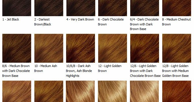 Chestnut Brown Hair Color Chart Image collections - chart design for - hair color chart
