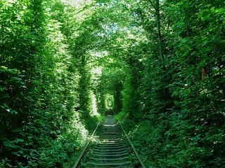 Клевань. Рівненська область. Тунель кохання