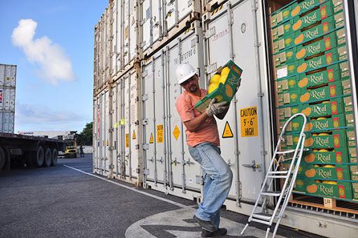 Exportação de frutas deve acelerar no segundo semestre, diz Abrafrutas - Portal Spy Noticias Juazeiro Petrolina