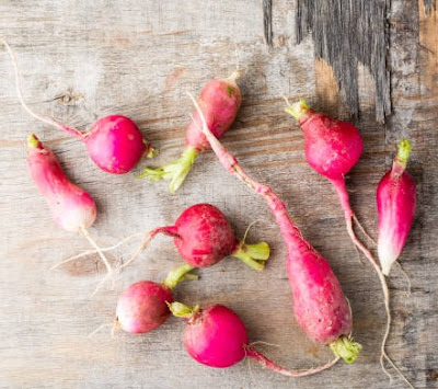 How to Grow Radishes from Scraps