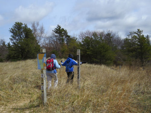 hikers on trail with dune grass