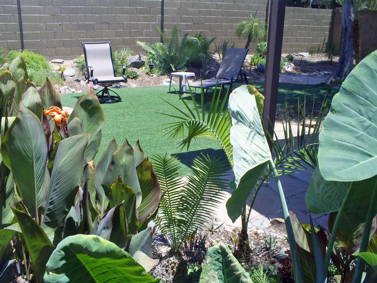 Brad's Tropical Paradise: Tropical backyard view on Tropical Backyards  id=31301