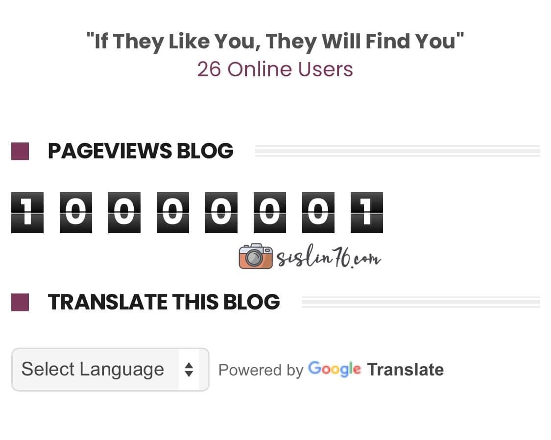 Pageviews Blog Aku Sudah Melepasi 10 000 000!