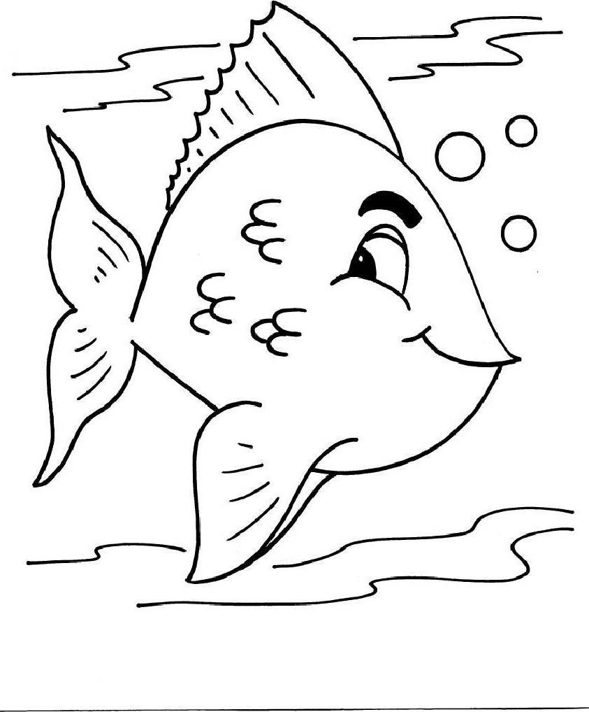 Encontre Tudo Aqui Fotos E Videos Dicas E Mais : Peixes