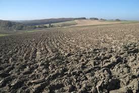 Tanah dijual citraland