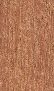 Kayu Kamper #Mengenal dan memilih jenis-jenis kayu terbaik untuk Kusen Rumah.