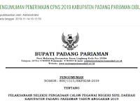 Formasi CPNS 2019 Kabupaten Padang Pariaman