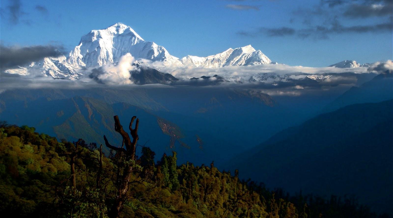 uncak Gunung Dhaulagiri - 8,167 m (Nepal) pegunungan tertinggi di dunia terdapat di pegunungan tertinggi di dunia terdapat di negara pegunungan tertinggi di dunia yang terdapat di asia adalah
