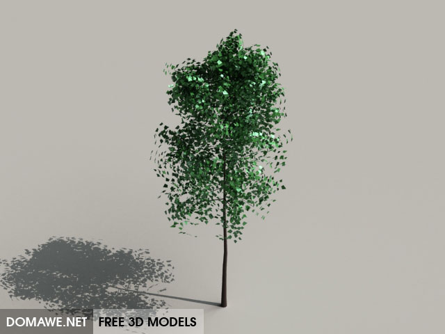 DOMAWE net: Tree 3D Model Free Download - 28