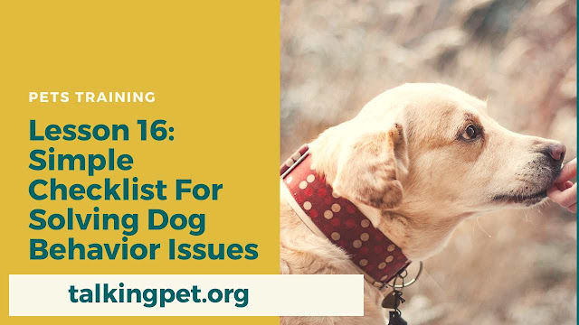 Simple Checklist For Solving Dog Behavior Issues